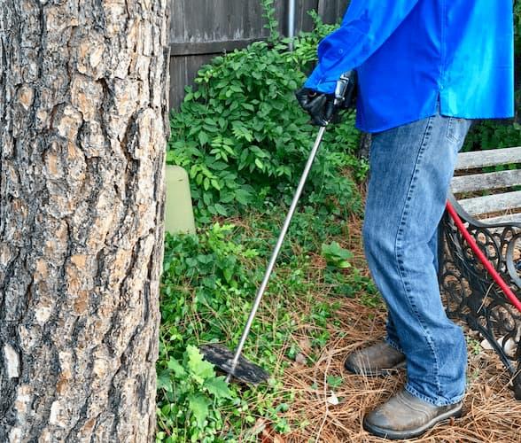 Deep Root Fertilization in Mira Vista, TX